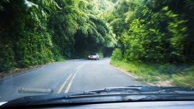 2003 - Maui, HI, USA - Hana Highway